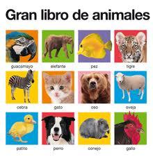 6 Gran libro animales